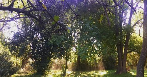 #solcito #otoño #buenosaires #colores