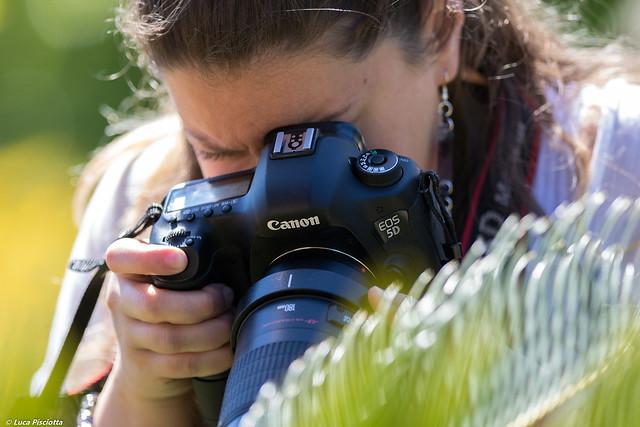 Canon 7D Mark II, Canon EOS 7D MARK II, Canon EF 300mm f/2.8L IS