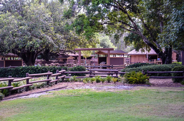 Fort Wilderness ranch