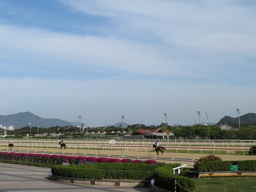 釜山慶南競馬場の返し馬