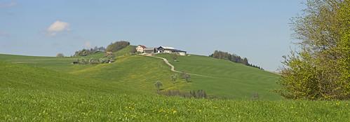Picturesque village Kaumberg, Austria