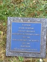 Photo of Elizabeth Rusbridge blue plaque