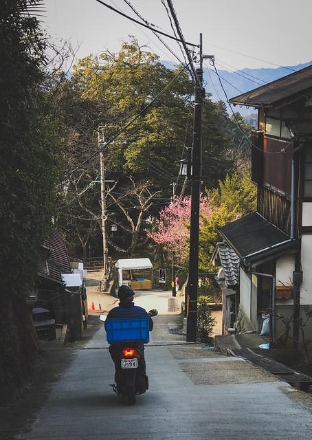 Yoshinoyama 吉野山. Japan