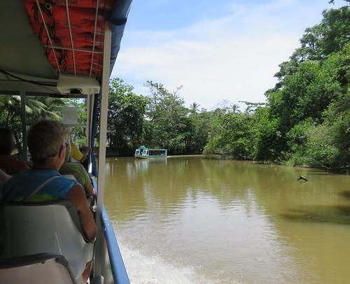 costarica jungle canal tour limon costa rica
