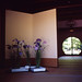和室與菖蒲 アヤメ Japanese Iris