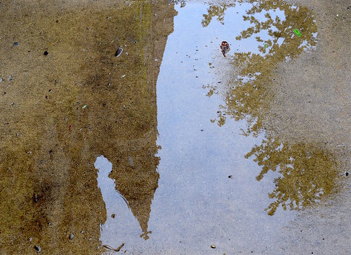 Gothic tower in puddle