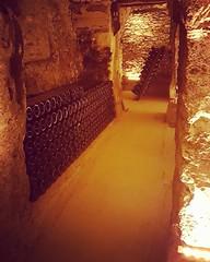 Trouver les bons murs #Entraillage #Tirage #mur #lattes #Champagne #Tarlant #vigneron #depuis1687
