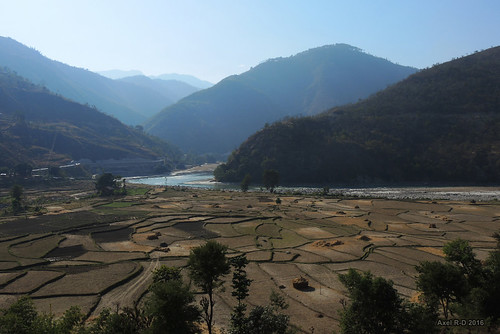 champs montagnes nepal préci rivière sunkoshiriver