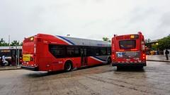 WMATA Metrobus 2011-2016 New Flyer Xcelsior XDE40 #7399 &7014