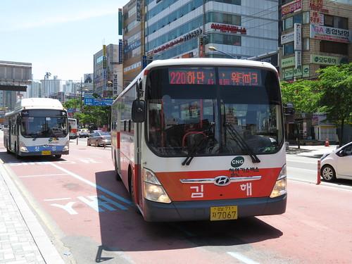 釜山慶南競馬場行の220番のバス