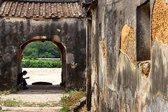 Lufeng  陸豐 2017