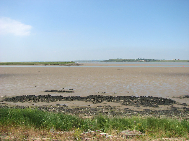 The Saxon Shore Way on Nagden Marshes