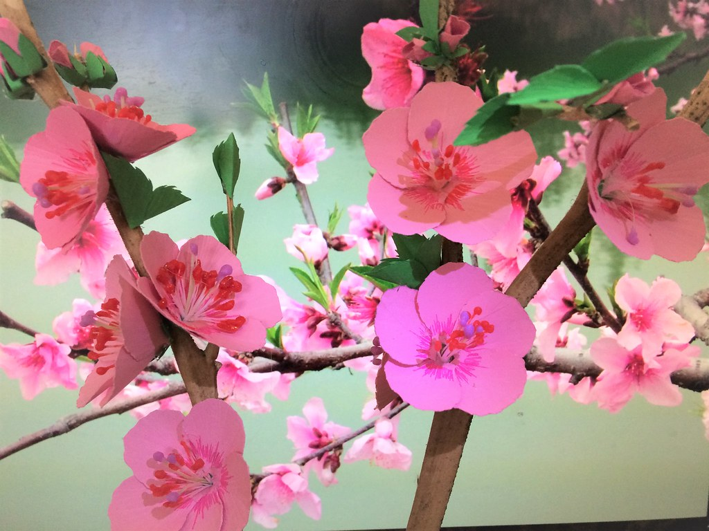 Please visit this YouTube link to create your own CHERRY BLOSSOM