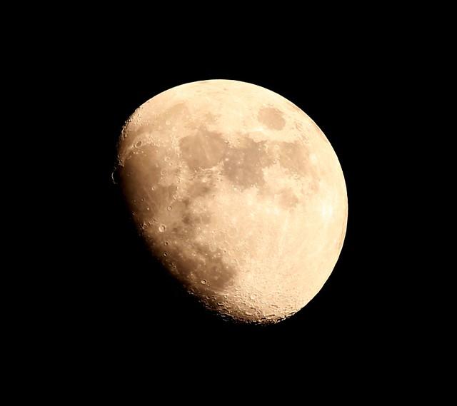 MoonShot.. Dishkyawww...