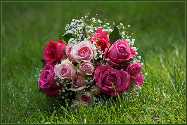 Grüße zum Muttertag ..., Sony ILCE-6000, Sony E 55-210mm F4.5-6.3 OSS