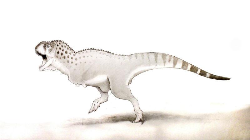 The discovered dinosaur Chenanisaurus barbaricus