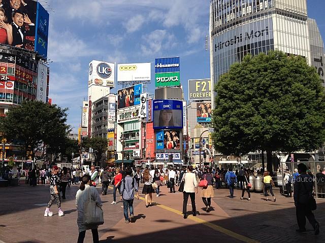 edutokyo_yakumo_201509 (1)