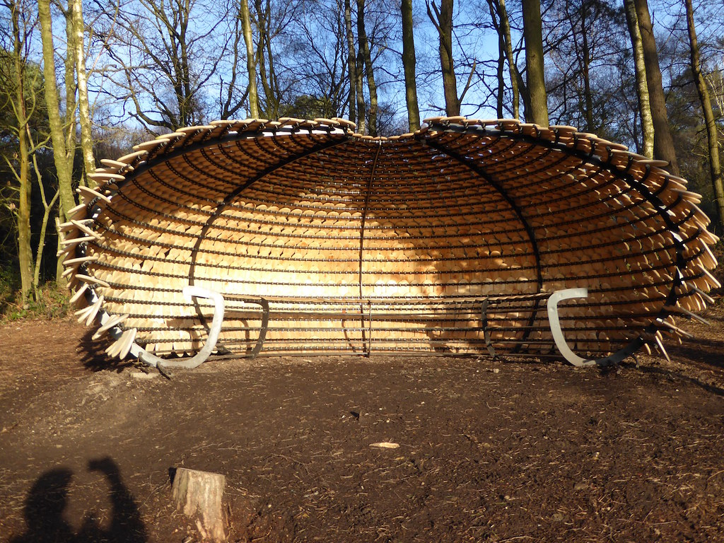 The curious shelter - inside Holmwood to Shamley Green walk