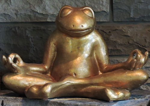 Frog in lotus position