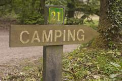 Camping Westerwolde