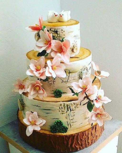 Cake by Carmen Dibu