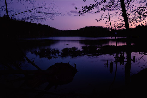 pond twilight dark nature outdoors purple shadows calm tree dirt nashua new hampshire newhampshire newengland lovewellpond