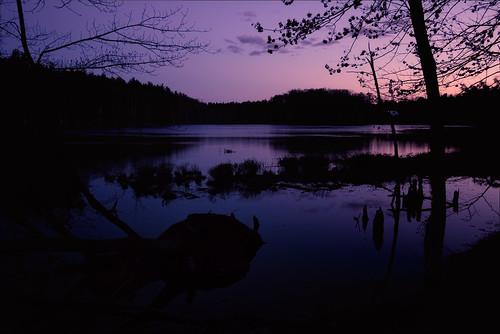 pond twilight dark nature outdoors purple shadows calm tree dirt nashua new hampshire newhampshire newengland lovewellpond