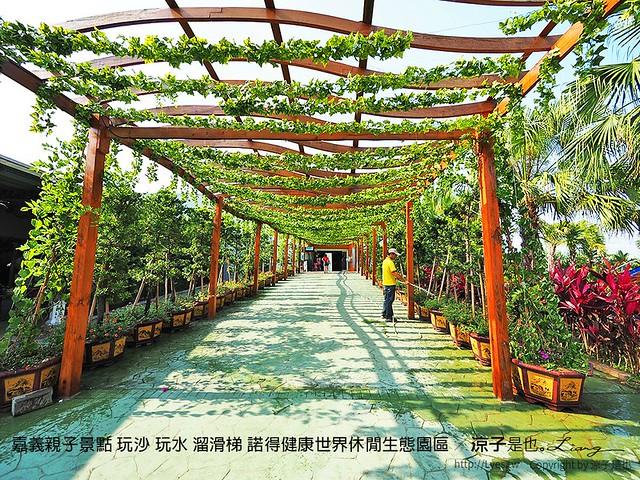 嘉義親子景點 玩沙 玩水 溜滑梯 諾得健康世界休閒生態園區 48