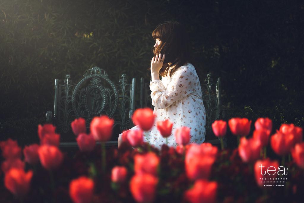 The Floral Garden