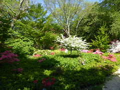 Planting Fields Arboretum - Oyster Bay (3)