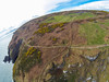 Purposeful Irish Winds