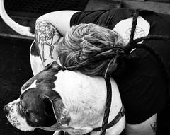 #tatsanddogs #dogs #dogsandpeople #dogsofinstagram #tattoo #bodyart #bodypositive #altgirl #MeatybonesJones #girlswithtattoos #sbbw #dogslife #americanbulldog #americanbulldogsofinstagram #tattoos #bnwstreetportrait #bnwportrait #bnwsteetphotography #bnwst