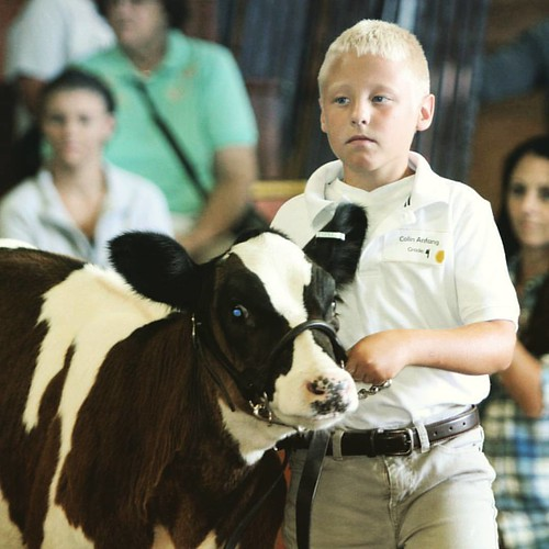 Exhibitor memories made at the #dcfairwi each year, plan now to attend August 16-20, 2017 near Beaver Dam, Wisconsin (link in bio) #dcfairwi #countyfair #wisconsin #travelwi #festival #musicfestival #exhibits #youth #experience #accomplishment #dairyfarm