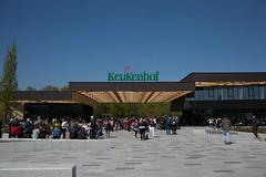 Keukenhof (1 of 1)