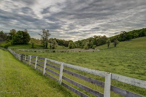 virginia farm landscape pastoral pasture sunrise delaplane unitedstates us
