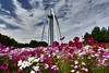 Ichinomiya Tower Park -Japan. by marcelo.nakazaki