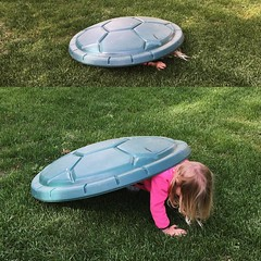 Being a turtle with the sandbox top.