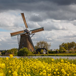 Typical Dutch @Kinderdijk