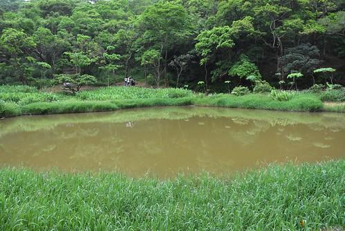 內溝山登山步道-翠湖