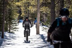 Cutler Hill Trails