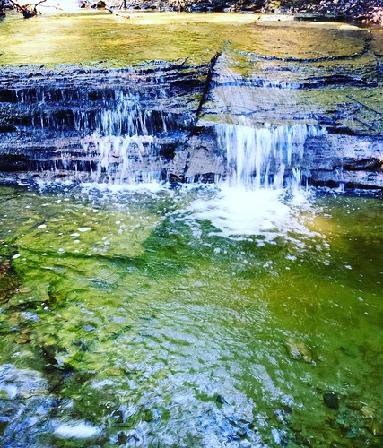 One of my favorite spots in the world. I love this little waterfall and pool. #stream #runningwater #waterfall #ChestnutRidge #wny #OrchardPark #summer