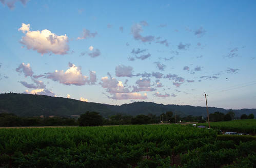 sunrise yountville napa