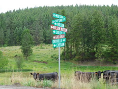 A Rural Directional Sign