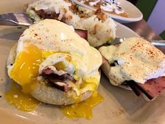 Ham Benedict III_Snooze eatery