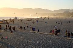 Santa Monica to Venice