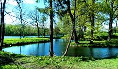 Gatchina park (2)