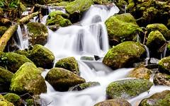 Small Waterfall Detail