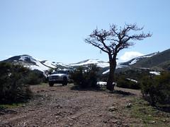 A pleasant campsite
