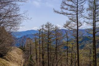 日向沢ノ峰を発ち稜線を進む