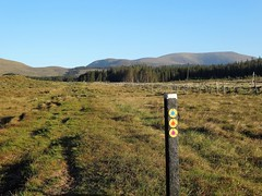 2017 May09 - Bangor Trail with Nephin Beg ahead